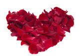 Heart of rose petals — Stock Photo