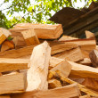 Wood prepared for winter — Stock Photo