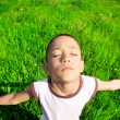 Young boy on the meadow — Stock Photo