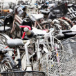 Bicycles — Stock Photo