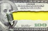 Torn dollars — Stock Photo