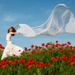 Royalty-Free Stock Photo: Beauty woman in poppy field with tissue