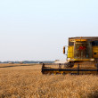 Combine harvester — Stock Photo #6106792