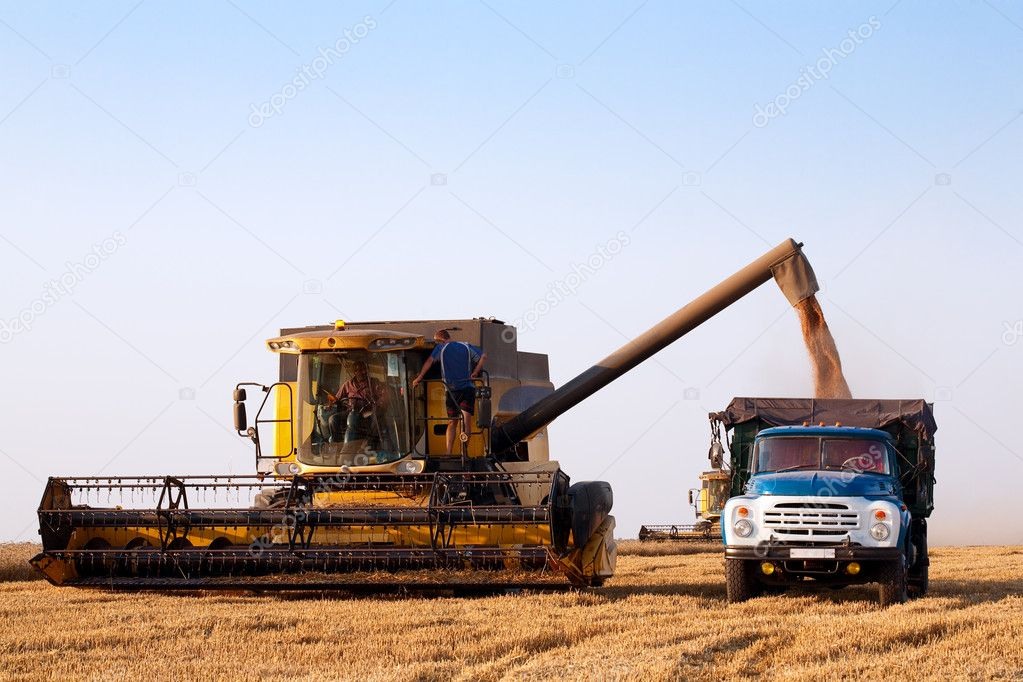 Combine harvester in field wheat — Stock Photo #6106791