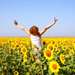 Stock Photo: Woman in field with sunflowers