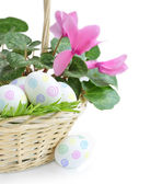 Paint eggs and pink flower in basket — Stock Photo