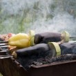 Vegetables are roasted over a fire — Stock Photo #6550010