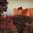 Mystery medieval castle — Stock Photo #6584931