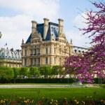 jardín del Louvre — Foto de Stock