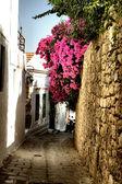 Strada medievale — Foto Stock