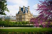 Louvre Garden — Stock Photo