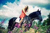 Schoonheid op paard — Stockfoto
