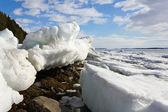 Sea ice is destroyed in the spring — Photo