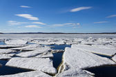 Sea ice is destroyed in the spring — Stock fotografie