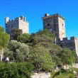 Castle of St. Peter in Bodrum, Turkey — Stock Photo