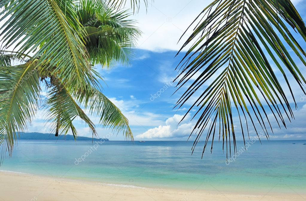 Beautiful beach with palm trees at Philippines — Stock Photo #5387074
