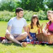 Family on picnic — Stockfoto #5876428