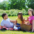 Family on picnic — Stockfoto #5876431