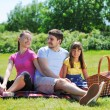 Family on picnic — Stockfoto #5876436