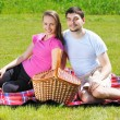 Couple on picnic — Stock Photo #5876439