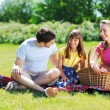 Foto Stock: Family on picnic