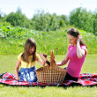 Family on picnic — Stock Photo #6054299