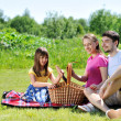 Family on picnic — Stock Photo #6054304