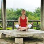 Yoga style — Stock Photo #6339739