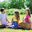 Family on picnic — Stock Photo #6339884