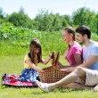 Family on picnic — Stock Photo #6339911