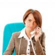 Young businesswoman talking on the phone — Stock Photo #5553489