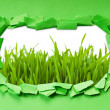 Torn paper with grass — Stock Photo