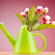 Gardening concept - Tulips and watering can — Stock Photo #6083096