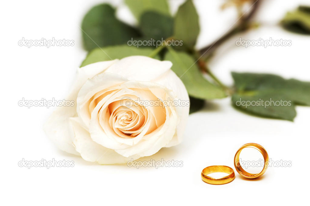 Wedding concept with roses and rings — Stock fotografie #6082384