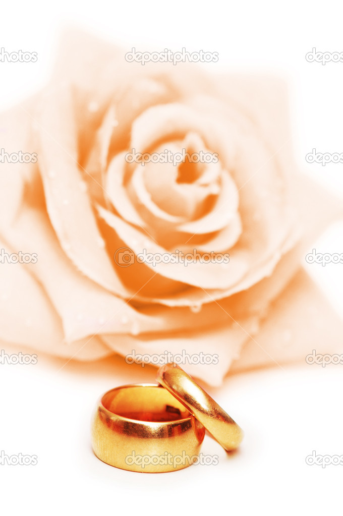 Wedding concept with roses and rings — Stock Photo #6083432