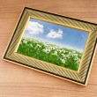 Camomiles field on picture frame — Stock Photo