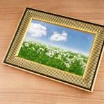 Ромашки поле на рамку рисунка — Стоковое фото