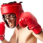 Funny boxer isolated on white — Stock Photo