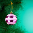 Christmas decoration on the tree - holiday concept — Stock Photo #6341747