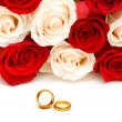 Wedding concept with roses and rings - Stock fotografie