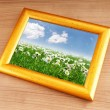 Camomiles field on picture frame — Foto Stock