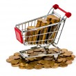 Gold coins in shopping cart — Photo
