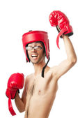 Funny boxer isolated on white — Stock Photo