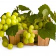 Isolated green grape with leaves in box — Stock Photo #6452214