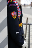 Soldier the sentry — Stock Photo