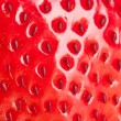 Macro strawberry — Stock fotografie