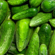 Cucumbers — Stock Photo #6635711