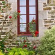 Window — Stock Photo #6636018