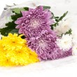 Bouquet of chrysanthemums — Stock Photo #6636300
