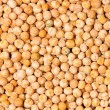 Yellow pea — Stockfoto #6733808